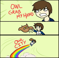 OWL CITY by LadyxOwl