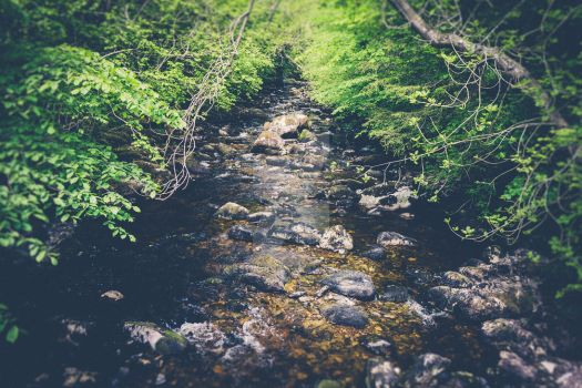 Water stream 2 by ViperKid89