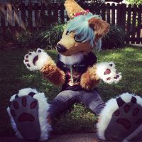My Fursuit by TalonOblivion