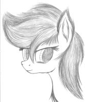 Pony Pencil Doodle by jazzy-rose-hxc
