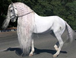 Andalusian horse by ele6767