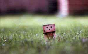 danbo's spring time by majgreen