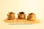 Mini Olive Oil Pots- Wood I by CompassRosePottery