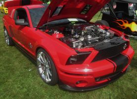 (2007) Shelby Mustang GT500 by auroraTerra