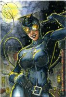 Catwoman ATC Colors by DKuang