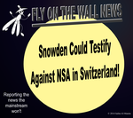 Snowden Could Testify Against NSA in Switzerland! by IAmTheUnison