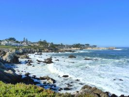 Pacific Grove Coast S1 by nyann