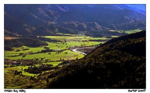 Golden Bay Valley by carterr