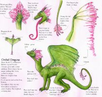 Orchid Dragon sheet by Rachelance