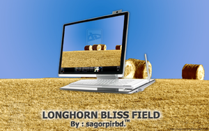 Longhorn Bliss Field_2 by sagorpirbd