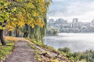 Autumn, Donetsk by daily-telegraph