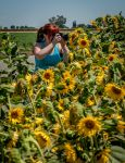 Woman in sunflowers by kayaksailor