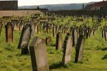 Whitby Abbey Graveyard 1 by FoxStox
