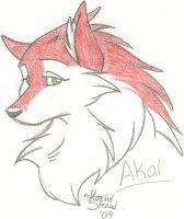 Gift Art: Akai by DrMario64