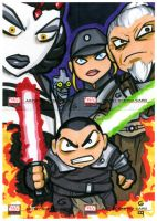 SW Galaxy: Force Unleashed Jr. by grantgoboom