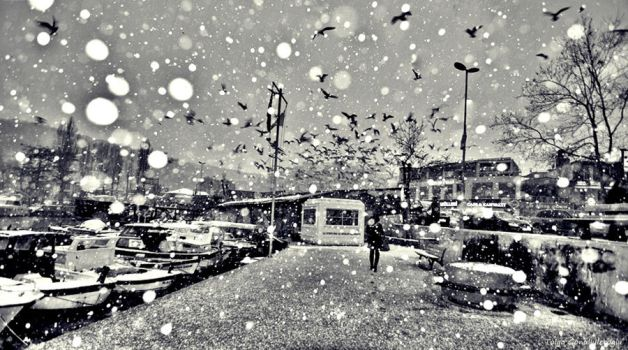 its snowing in istabul 2 by tolgag