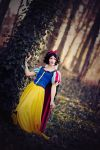 Snow White - Magic Woods by aco-rea
