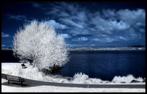 Lakeside View -IR- by 32tsunami