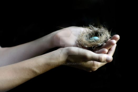 the gift. by disco-ball