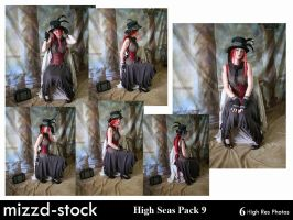 Steam Traveller Pack 9 by mizzd-stock