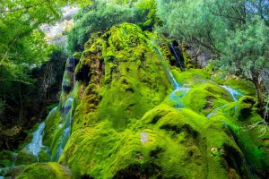 Green Waterfall by micthiegraphy