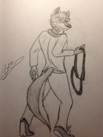 Balto by DarkAngelsan