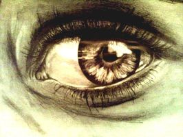 Eye Study in pencil by Don-Berry