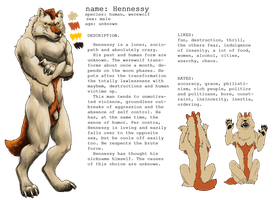 Hennessy Reference Sheet 1.0 ENG by Shaggy-grim