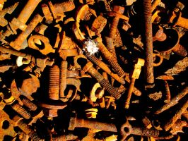 Prickly Rusty Nuts and Bolts by DVanDyk