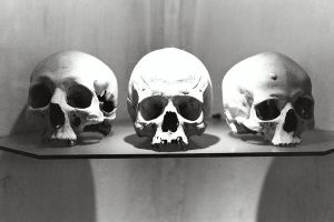 3 Skulls by drHackenbush