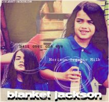 Blanket Jackson blend by meancreek