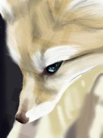 Fennec Fox by xToulax