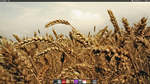 PixDev Windows XP desktop by Baronbruce