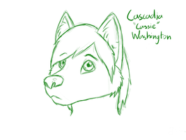 My new Fursona- Cascadia 'Cassie' Washington by SonarSnow