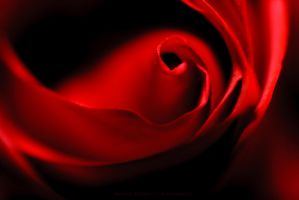 Happy Valentine's Day 2015 by Maginater