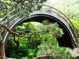 Japanese Tea Garden: bridge by QmagicalQpineappleQ