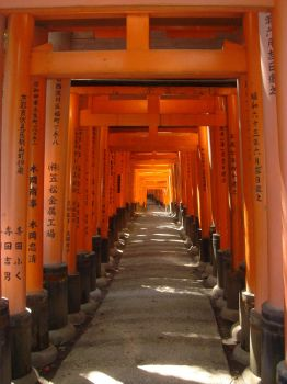 Shinto Arches in Japan by mousse66