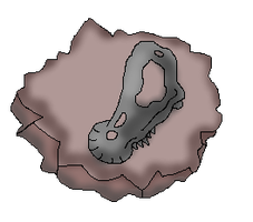 Stubbed Beak Fossil (CoC Fossil) by Dianamond