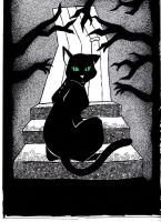 black cat by Mary-Grave