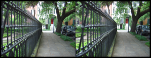 Garden : Fence : Street by cow41087