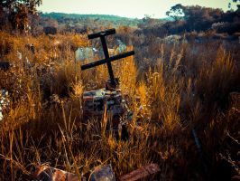 Abandoned cemetery by ipawluk