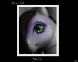 WIP and Tease- Patch Noir by wylf