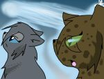 A message from StarClan by Warriorsorganic