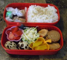 O bento by Demi-Plum