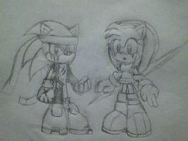 Neo Sonic and Amy Doodles by SaberCookie2410