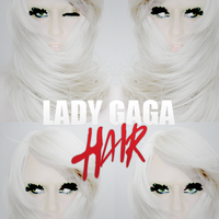 Lady GaGa - Hair by HOGArts