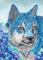 ACEO: CID by LadyMignonette