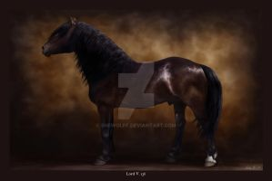 Equine Legacy: Lord V 136 by SheWolff