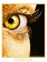 Golden Eye by dream-shot