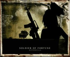 SOLDIER OF FORTUNE by ruthnella
